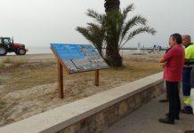 Ecosistema dunar