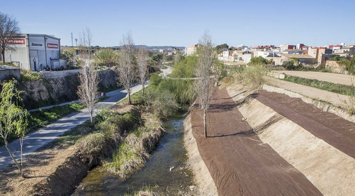 Limpieza Barranco Picassent