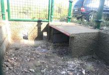 zona de alimentación para gatos