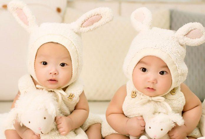 Actuaciones para bebés