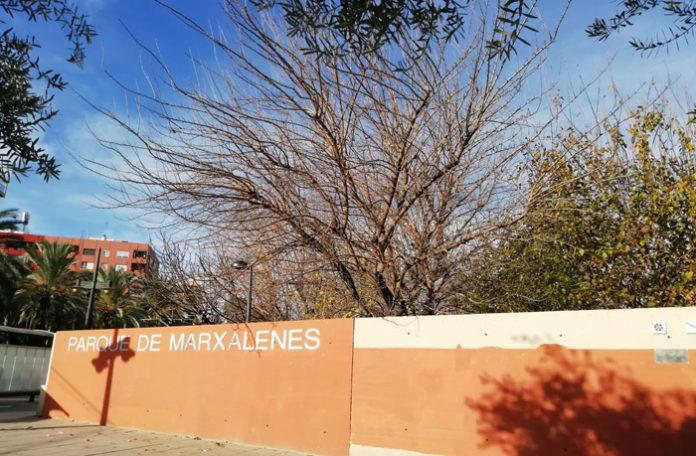 viento en parques de Valencia