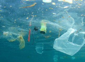 prohíben los plásticos