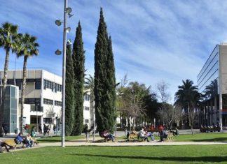 Las cinco carreras de las universidades españolas con más salidas