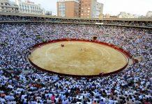 La Plaza de Toros responde: ¿Cancelarán la Feria de Fallas por el coronavirus?
