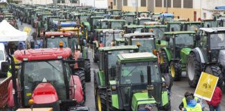 Centenares de tractores tomarán las calles de Valencia en defensa del sector arrocero