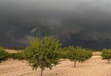 La provincia de Valencia vive la peor tormenta de pedrisco de los últimos 30 años