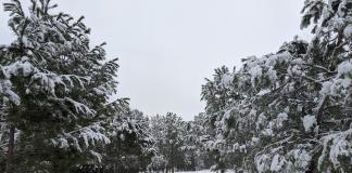La Comunitat entra en alerta roja por nevadas de riesgo extremo