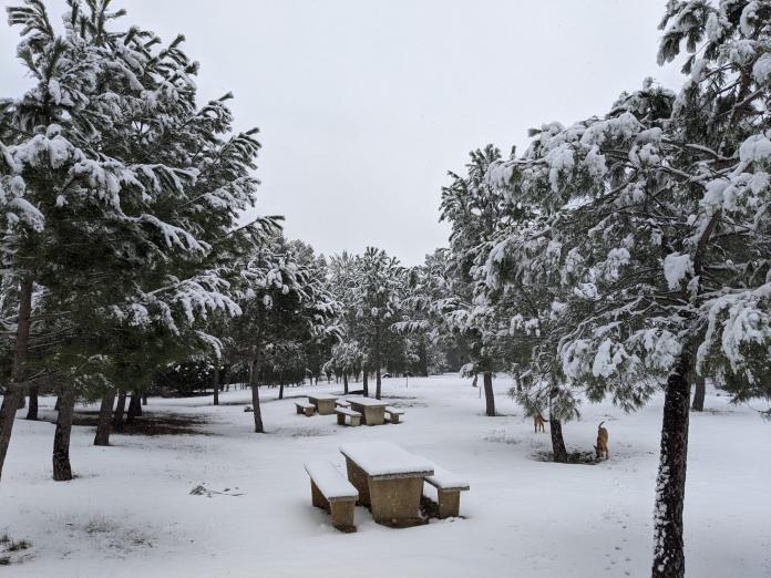 Valencia entra en alerta roja por nevadas de riesgo extremo