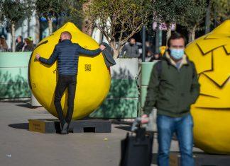 Unos limones de 2 metros y 300 kilos inundan el centro de Valencia