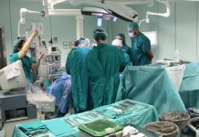 448 trasplantes
