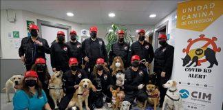 Adiestradores valencianos ofrecen a Sanidad perros detectores de coronavirus