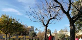 La Comunitat Valenciana inicia la desescalada: 12 preguntas y respuestas sobre las nuevas restricciones