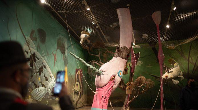 Las aves de la Albufera cobran vida con una exposición de la futura falla municipal