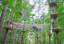 8 parques de aventuras para disparar la adrenalina en la Comunitat Valenciana