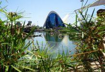 El Oceanográfic se une a una iniciativa mundial sobre la crisis de la naturaleza
