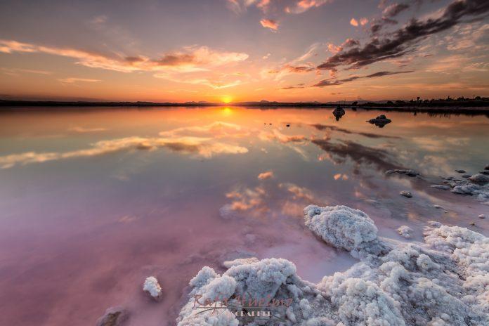 La Laguna Rosa valenciana, una maravilla acuática única en España