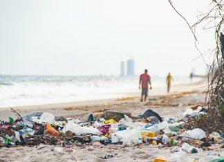 Banderas negras 2021   Seis playas valencianas entre las peores de España
