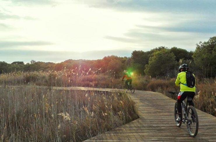 Proponen un nuevo carril bici para unir cinco municipios de la Horta Sud con la Albufera