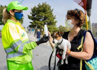 El Ayuntamiento de Valencia obligará a limpiar los orines de los perros